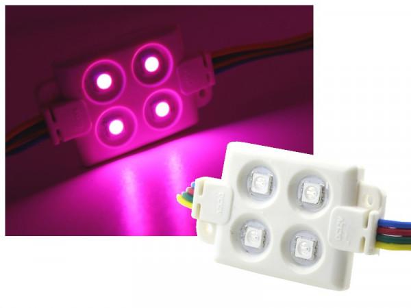 LED Modul 4-LED IP65 RGB